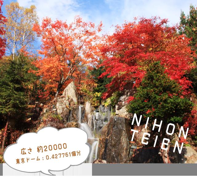 広さ 約20000㎡東京ドーム:0.427761個分